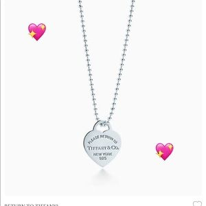 Authentic Tiffany & Co. Heart 💙 Pendant Necklace